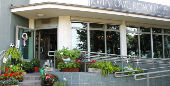 kokosowa_okolica12